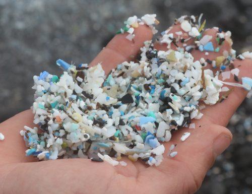 Microplastiche: cosa sono e come si diffondono