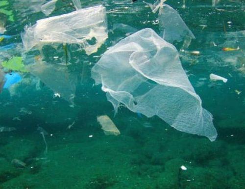 Il Mar Mediterraneo in una trappola di plastica